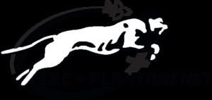 http://www.apbenfantsensante.ca/wp-content/uploads/2016/11/ESCP_logo_noir-300x142.png